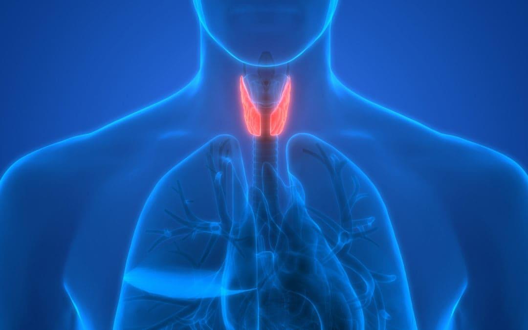 Chora tarczyca to osłabienie całego organizmu