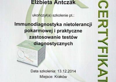 Certyfikat Ela 03